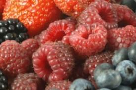 Cesteros Frutos Rojos AP 482